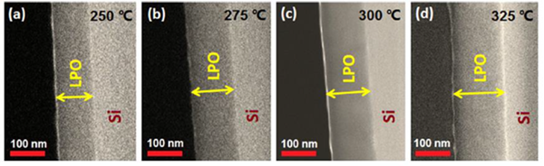 SEM images of lithium phosphate films deposited on Si_100_substrates using ALD