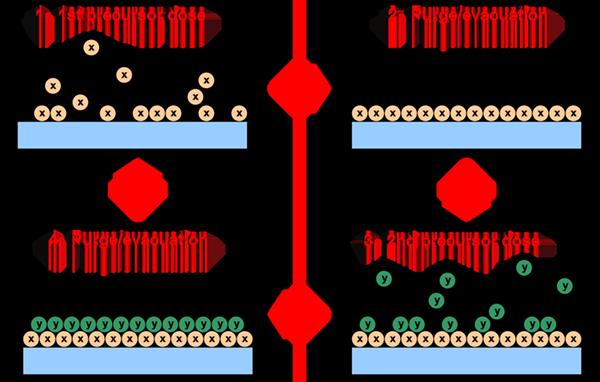 Atomic Layer Deposition utilising two distinct precursors (X, Y)